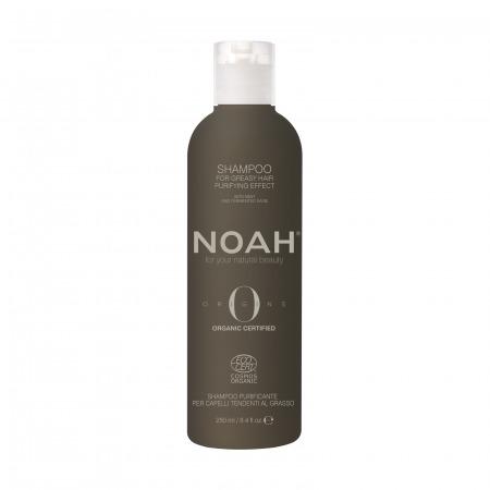Prodotti naturali per capelli grassi - Shampoo Purificante